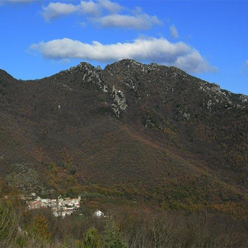 Monti Trebulani